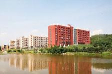 什么是快乐星球,广东岭南现代技师学院带你研究