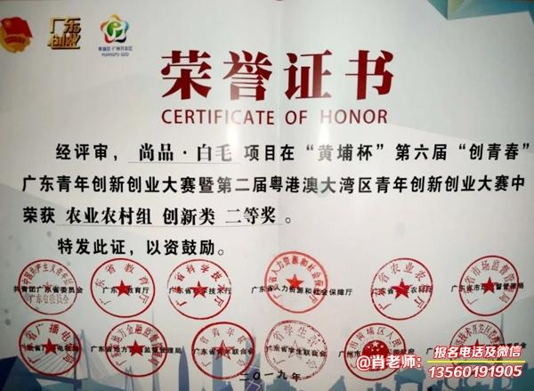 广东岭南现代技师学院市场营销专业
